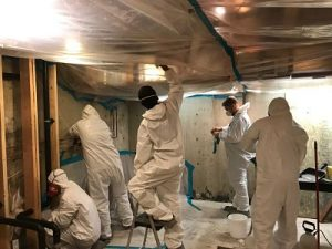 911-restoration-Chicago-Mold Removal