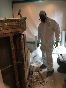 Technician Cleaning Up Water Damage And Mold
